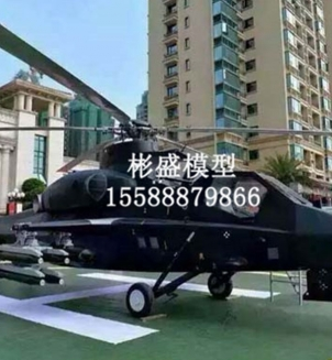 大型飞机模型